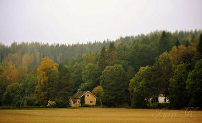 Autumn in Finnish countryside by KnifeInToaster