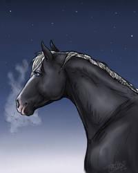 winterhorse by KnifeInToaster