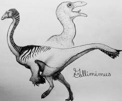 Gallimimus by TheGreatestLoverArt