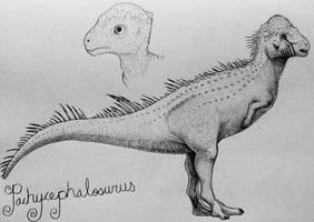 Pachycephalosaurus  by TheGreatestLoverArt