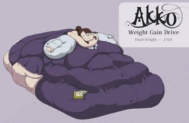 Akko Weight Gain 4/4 by Seatbelt-DA