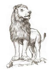 sketchbook: pencils: Lion Majestic by tnoone