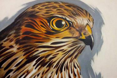 acrylics: Bird of Prey by tnoone