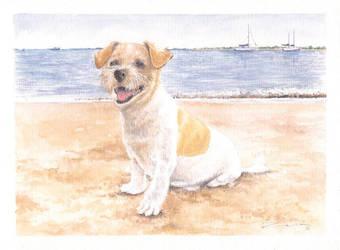 Doggy by zaranoias
