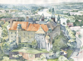 Wawel aerial by GreeGW