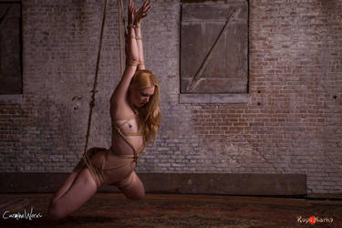 The initiation of Ariel Anderssen by ropemarks
