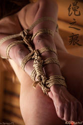 Bamboo Spread, part 1/3 by ropemarks