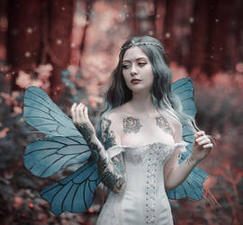 Fairy by MariannaInsomnia