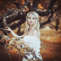 Elf by MariannaInsomnia