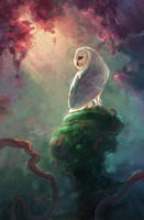 barn owl in lights by TorySevas
