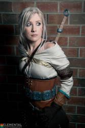 Witcher 3 - Wanted Princess by Kukuzilla