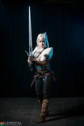 Witcher 3 - Warrior of Cintra by Kukuzilla