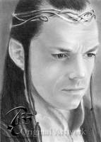 Lord of the Rings - Elrond by Cookai