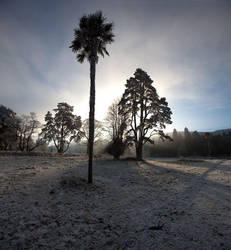 Gurteen in the Winter 1 by Cyril-Helnwein