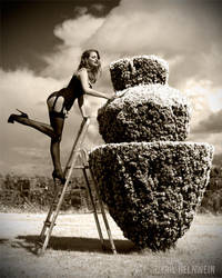 Trimming the Bush by Cyril-Helnwein
