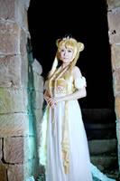 Sailor Moon - Princess Serenity by TORI-yuu