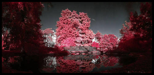 Botanical garden Zagreb by Q-harrr