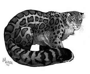 Snow Leopard by caramitten