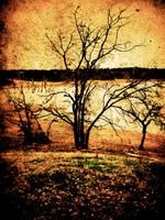 Grunge Branch by jpadfx