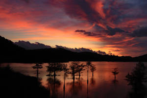 Ocoee Fire by SunsetRising-Art