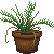 Potted Palm Icon by Skarlet-Raven
