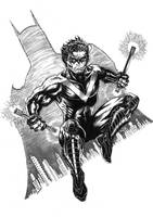 NIGHTWING 2012 by barfast