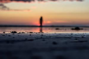 Sunset by Sliktor