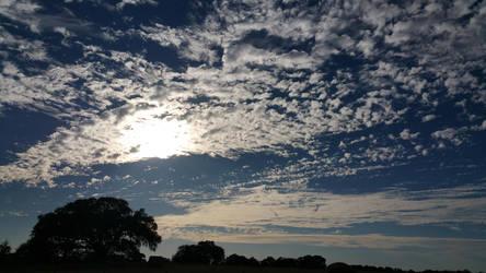 Cloudscape by dragonlady864