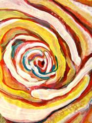 many a rose, scott richard by scottrichard