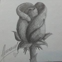 Rose  by beamaa4