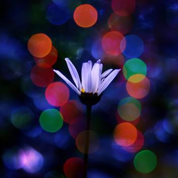 magic simplicity. by oro-elui
