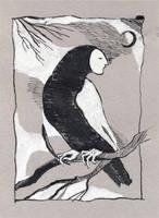 A wise owl by Glutiam