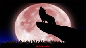 Wolfs Rain by JoGe23