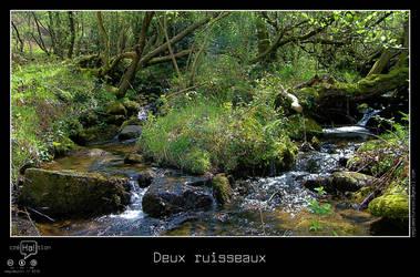 Deux ruisseaux by regisburin