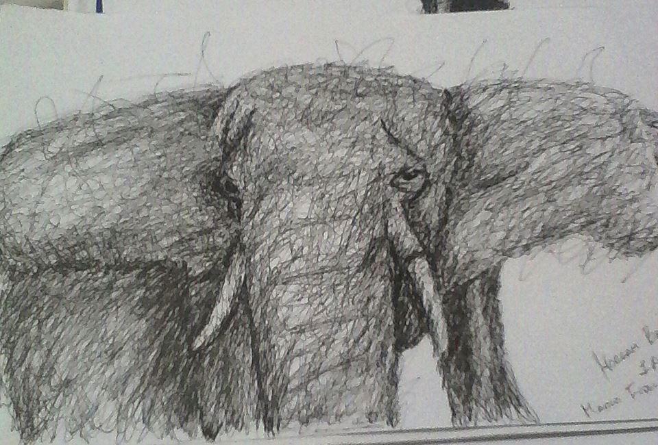 Elefante linea libre by TushistoriaS2