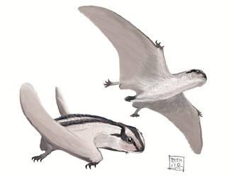 Dendrorhynchoides by MattMart