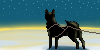 Sled dog Sunrise by warpugs