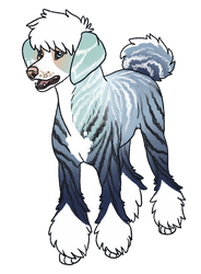 poodle boi by leafylaurel