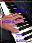 '-67- Playing the Melody' by MagicalJoey