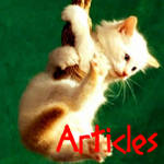 Articles Gallery Icon by MagicalJoey