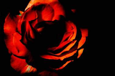 your heart is an empty room by gebimble