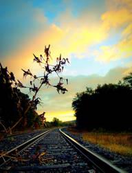 Untold Journeys by lilithfirefly