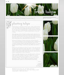 Fresh Tulips Template by VelvetElvisDesign