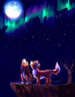 Fox 'n the Hound: Summer Nights by TommyGK