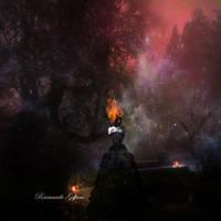 Fire And Ice by raimundogiffuni