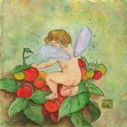 Tomato Fairy by Caravaggia