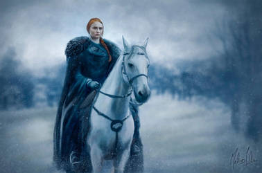 Sansa Stark by Lasse17