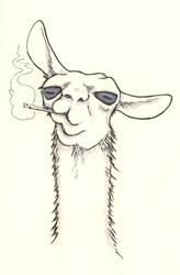 Llama by warriorneedsfood