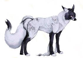 Fluffy Fox-thing by cottondragon