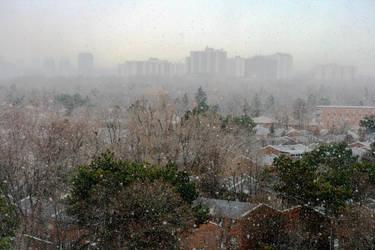 A Snowy Toronto Morning by oibyrd